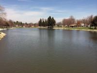 und noch mehr Park