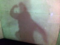 Ich habe meinen eigenen Schatten gemacht :D